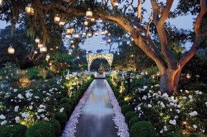 Preston Bailey flower Garden theme